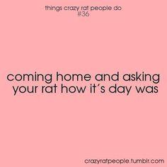 I love it when the run to greet me when I come home ❤