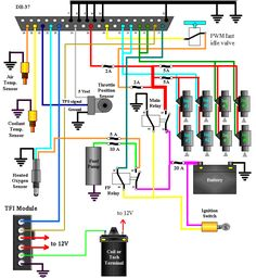 LS1 Coil Wiring Diagram Auto Repairs Electrical