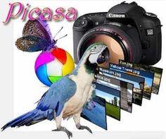 Picasa 3.9.0 Build 136.18 Türkçe Full İndir - http://kalpazanlar.com/picasa-3-9-0-build-136-18-turkce-full-indir.html