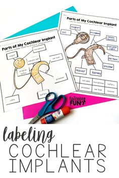 FREE Labeling cochlear implant parts. Worksheets for deaf and hard of hearing students. Teachers of the deaf can use these in hearing services and deaf education to teach self-advocacy skills. FREE Labeling cochlear implant parts. Hearing Implants, Cochlear Implants, Deaf Education Activities, Elementary Education, Hearing Impairment, Deaf Children, Self Advocacy, Deaf Culture, Speech And Language