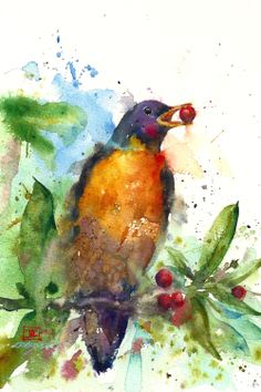 ROBIN Watercolor Bird Print by Dean Crouser. via Etsy.