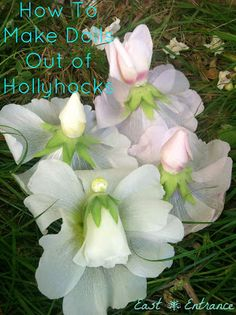 East Entrance: How To Make Hollyhock Dolls Dremel Projects, Projects To Try, Garden Plants, House Plants, Daisy Crown, Fairy Garden Furniture, My Fairy Garden, Fairy Garden Accessories, Hollyhock