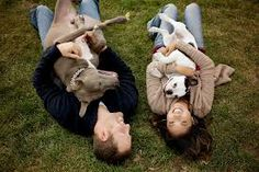 engagement photos with dogs - Google Search