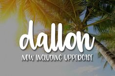 Dallon Fonts Dallon is a great script to create stunning branding, crafting and other projects you have in mind! by OnTheSpotStudio Pretty Fonts, Beautiful Fonts, Cool Fonts, Cursive Fonts, Calligraphy Fonts, Christmas Fonts, Wedding Fonts, Creative Fonts, Premium Fonts