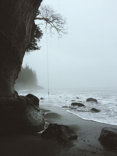 Pacific Northwest. | Gabrielle Assaf