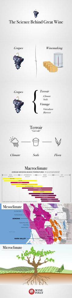 The Science behind great #wine by Wine Folly. Soils, Climate, Winemaking and More.
