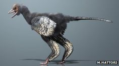 What may be the earliest creature yet discovered on the evolutionary line to birds has been unearthed in China.
