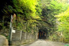 "I added ""Vor dem Tunnel,,,"" to an #inlinkz linkup!http://mumselsgartenparadis.blogspot.de/2013/10/tinas-wortlos-mittwoch-94.html"