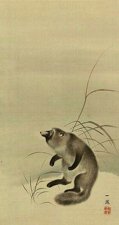 Badger - Mori Ippo 19th C. Japanese Art Styles, Japanese Artwork, Japanese Painting, Japanese Prints, Cute Paintings, Animal Paintings, Japanese Animals, Japanese Culture, Badger