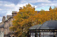 Autumn in Harrogate, North Yorkshire