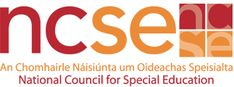 National Council for Special Education - CPD and In-School Support School Counselor Organization, Elementary School Counselor, Teaching Special Education, Teacher Education, Physical Education, Dyslexia Teaching, Co Teaching, Social Emotional Learning, Social Skills