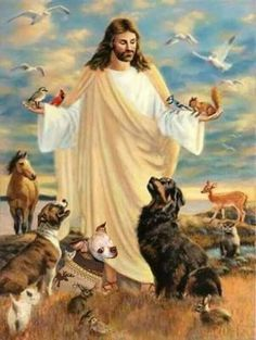 The Lord God made them all. God and Jesus Christ Images Bible, Image Jesus, Pictures Of Jesus Christ, Biblical Art, Jesus Is Lord, Jesus Faith, Rainbow Bridge, Dog Quotes, Christian Art