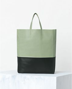 CÉLINE   Spring 2014 Leather goods and Handbags collection BI-CABAS HANDBAG IN LAMBSKIN PISTACHIO