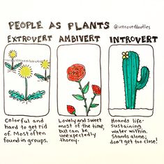 People As Plants.I am an Ambivert, about extrovert and introvert, lol. Extroverted Introvert, Infj Infp, Introvert Quotes, Introvert Funny, Introvert Problems, Ambivert, Myers Briggs Personalities, 16 Personalities, Mbti Personality