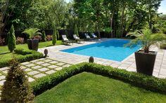 Poolside - boxwoods, the pavers instead of cement and love the grass in between. Swimming Pool Designs, Swimming Pools, Pergola Kits, Pergola Ideas, Backyard Ideas, Pergola Plans, Pool Ideas, Patio Ideas, Pool Images