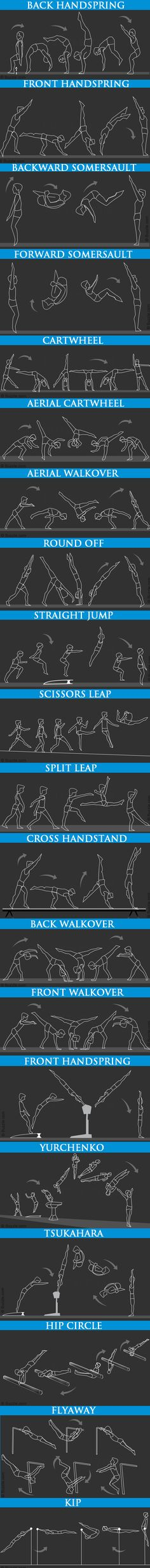 Basic Beginners Gymnastics Moves - Illustrated and Described