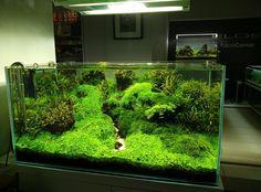 Sourcingmap Plastic Water Tank Aquarium Fish Decoration 5-piece Blue/white