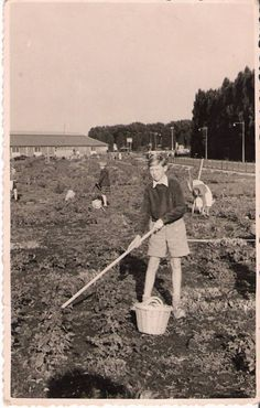 Schooltuintjes Boezemweg 1952
