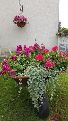 28 DIY Vintage Wheelbarrow Planter Ideas - Unique Balcony & Garden Decoration and Easy DIY Ideas - Modern Design Container Gardening Vegetables, Container Plants, Flower Planters, Garden Planters, Balcony Garden, Garden Yard Ideas, Garden Projects, Diy Projects, Wheelbarrow Planter