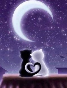 Solve Кошки jigsaw puzzle online with 12 pieces Cute Cat Wallpaper, Galaxy Wallpaper, Image Chat, Cute Animal Drawings, Cat Drawing, Pretty Wallpapers, Moon Art, Cute Baby Animals, Cat Love