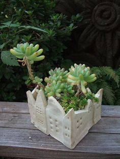 "Delightful succulent garden in a lovely square ""City wall"" container."