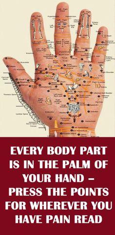 Medicine Book, Herbal Medicine, Medicine Student, Homeopathic Medicine, Chinese Medicine, Acupressure Points, Palm Of Your Hand, Alternative Medicine, Alternative Health