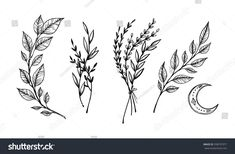 Find Hand Sketched Vector Vintage Elements Laurels stock images in HD and millions of other royalty-free stock photos, illustrations and vectors in the Shutterstock collection. Black Ink Tattoos, Mini Tattoos, Flower Tattoos, Small Tattoos, Tattoo Swag, Botanisches Tattoo, Wild Tattoo, Unique Tattoos, Beautiful Tattoos