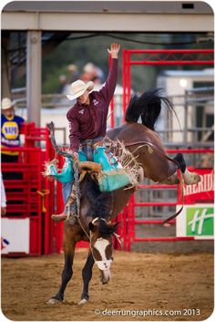 Watch a Saddle Bronc Riding, Sheridan, Wyoming Rodeo Cowboys, Real Cowboys, Rodeo Time, Bull Riders, Cowboy And Cowgirl, Sheridan Wyoming, Horses, Cowgirls, Broncos
