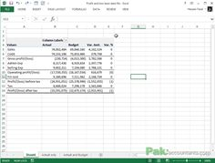 profit and loss format in excel