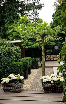 modern green and black garden
