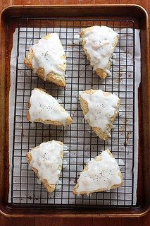 Lemon Poppyseed Scones // www.completelydelicious.com by Completely Delicious, via Flickr