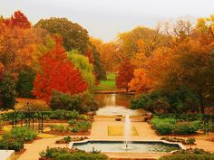 The Fort Worth Botanical Gardens in the fall with a slight fog