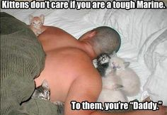 Kittens don't care…