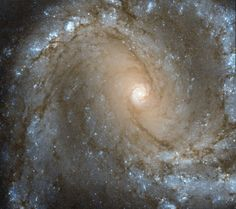In the Center of Spiral Galaxy M61 Image Credit: ESA/Hubble, NASA; Acknowledgements: G. Chapdelaine & L. Limatola