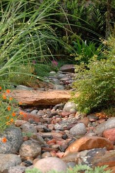Dry Creek Bed Near Pool Landscape Design Ideas, Pictures, Remodel and Decor