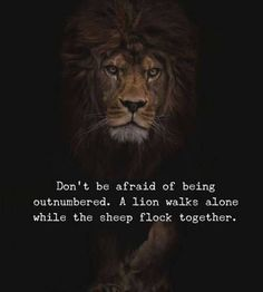 67 Top Quotes Inspirational for Success That will Inspire You Extremely 14 - Kinder Fotos Quotes Mind, Quotes Thoughts, Life Quotes Love, True Quotes, Great Quotes, Motivational Quotes, Inspirational Quotes, Dont Be Afraid Quotes, Hell Quotes