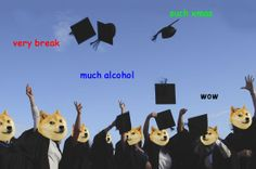 """very break. such xmas. much alcohol. wow. In celebration of finishing the first semester at uni I thought I'd get on this """"doge meme"""" thing"""