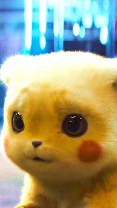Pikachu Cat, Pikachu Drawing, Cute Pikachu, Cute Pokemon Wallpaper, Cute Cartoon Wallpapers, Anime Girl Cute, Kawaii Anime Girl, Baby Animals Super Cute, Cute Animals