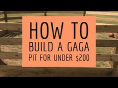 How To Build A GaGa Pit For Less Than $200 - YouTube