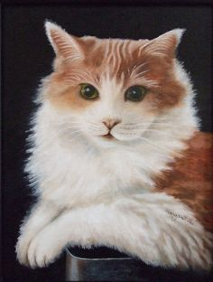 CUSTOM PET PORTRAIT: a personalized cat or kitten oil painting from your original photo - This is Peanut!
