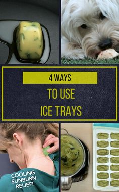 Turns Out That Ice Cube Trays Are The Unlikely Solution To These 4 Problems