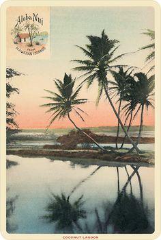 "Aloha Nui Postcard -Means ""Warmest Greetings"" or ""With Love"" Hawaiian Vintage Postcard - save the date"