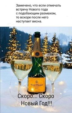 Happy New Year Cards, White Wine, Alcoholic Drinks, Christmas Cards, Mood, My Favorite Things, Glass, Winter, Funny