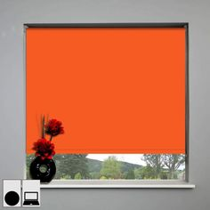 black out blind - Google Search
