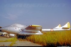 Photos: De Havilland DH-115 Vampire T11 Aircraft Pictures | Airliners.net De Havilland Vampire, American War, Aircraft Pictures, War Machine, Jets, Planes, Aviation, Photos, Airplanes