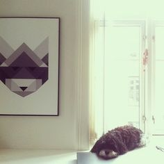 Waiting for Christmas to come.  Raccoon + Balder by Silke Bonde