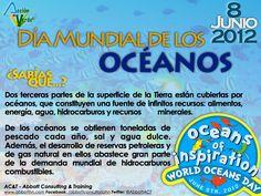 8 de junio: día mundial de los océanos