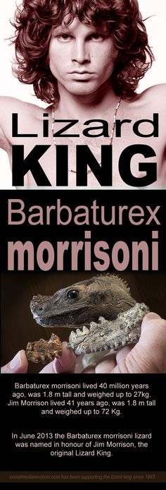 Finally, the Lizard King got his own lizard! Barbaturex morrisoni in honour of Jim Morrison. http://socialmediarevolver.com/