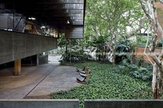 architect s house (house in butantã) paulo mendes da rocha