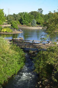 Alton Baker Park, Eugene, OR: visit & feed the famous Oregon ducks! State Of Oregon, Oregon Ducks, Oregon Coast, Portland, Oh The Places You'll Go, Places To Visit, Vancouver, Visit Oregon, Oregon Living
